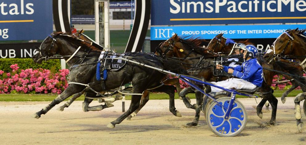 Ultimate Sniper, driven by his co-trainer, Natalie Rasmussen, produces a brilliant performance to...