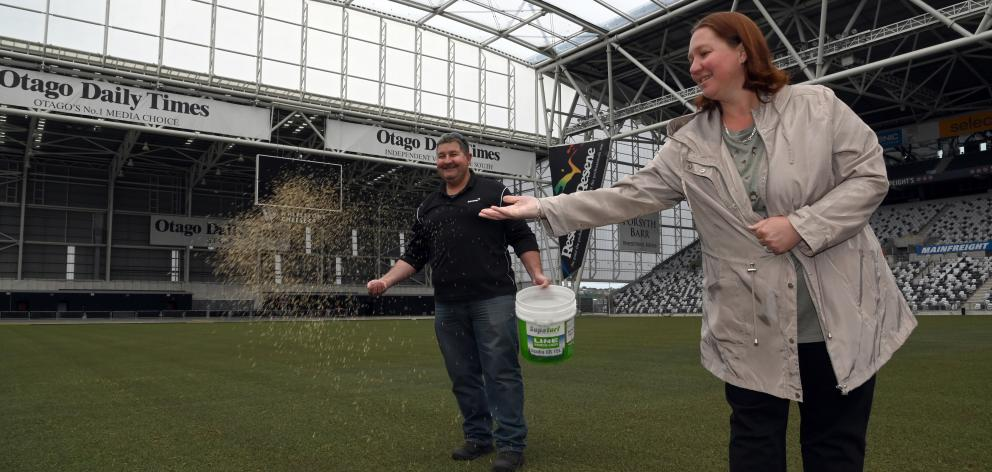 Steven and Tracy Smith help spread grass seed on the pitch at Forsyth Barr Stadium yesterday, as part of the turf renovation. Photo: Craig Baxter