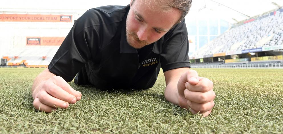 Overseeing the biennial re-turfing of the grass is Forsyth Barr Stadium turf manager Michael Watson, who examines the remaining natural grass and synthetic fibres left on the pitch after stripping. Photo: Craig Baxter