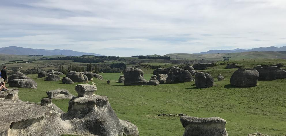 Limestone boulders at Elephant Rocks near Duntroon.