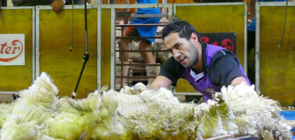 Joel Henare, of Gisborne, watches his fleece carefully on his way to an 11th New Zealand open...