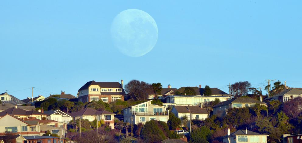 Dunedin recorded its hottest temperature of the summer so far, in the middle of the night. Photo: Stephen Jaquiery