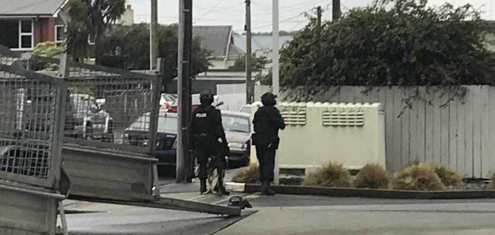 Armed police during a raid on Richmond St, Forbury. Photo: Daisy Hudson