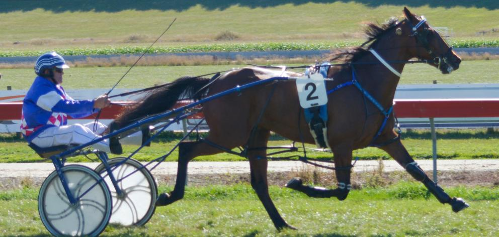 Shadow Minister wins the Waikouaiti Cup at Oamaru yesterday for trainer-driver Leo O'Reilly....