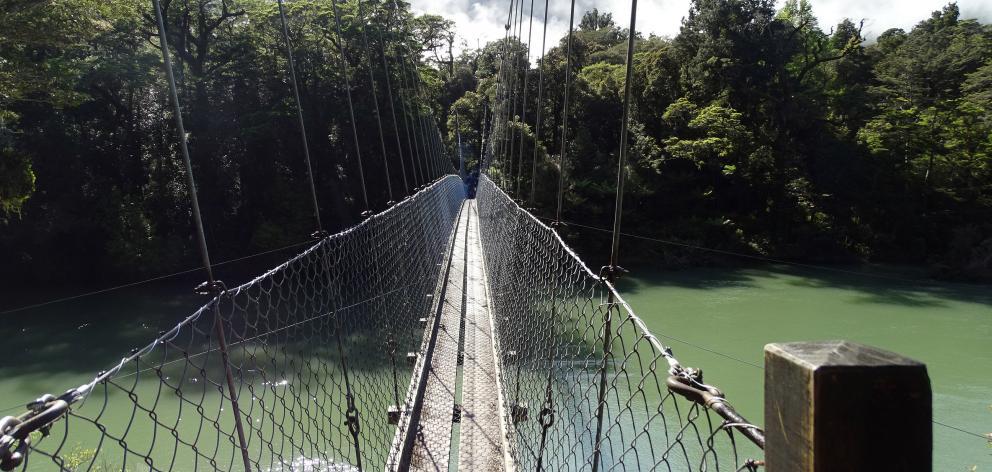 The longest swing bridge in Fiordland.
