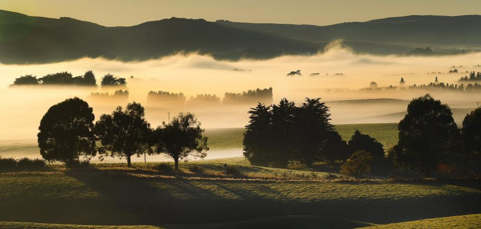 It was a frosty start in Clutha district yesterday as low fog hung  around near State Highway 93,...