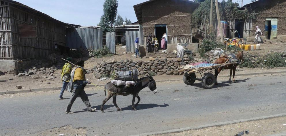 A donkey pulls a cart through a typical village in northern Ethiopia. PHOTOS: CHARMIAN SMITH
