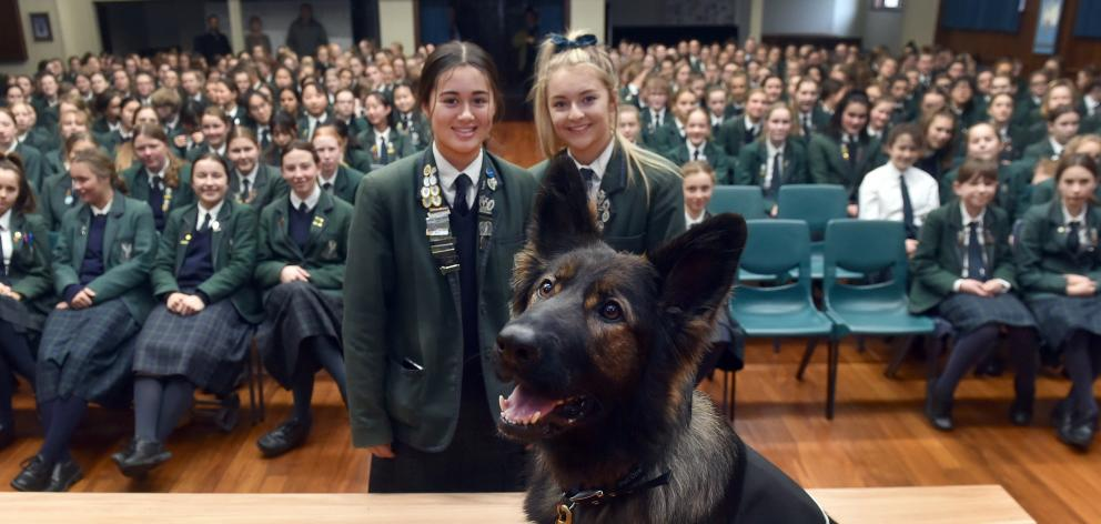 Columba College pupils Maia Joseph (left) and Jess Cowie (both 18), with K9 Medical Detection dog...