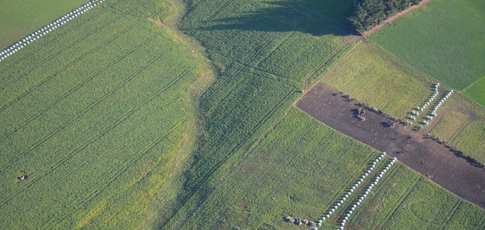 Environment Southland carried out the first of its aerial inspections of winter grazing practices...