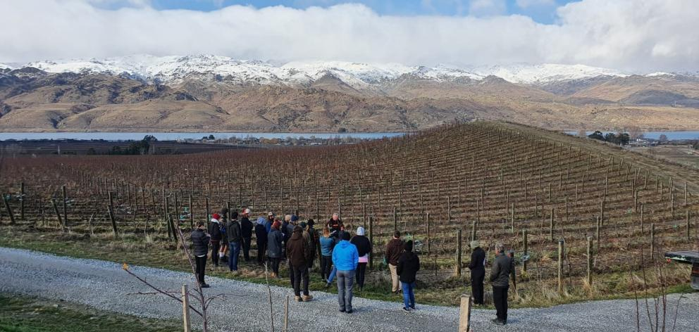 About 30 people attended the Central Otago Young Viticulturist of the Year educational day at...