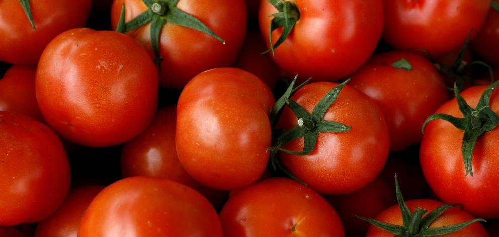 Tomatoes. Photo: Reuters