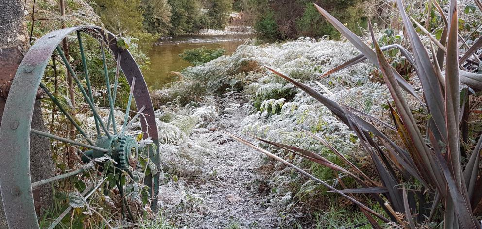 A frosty -9degC July morning on the Inangahua. In earlier years the river has been half-frozen at...