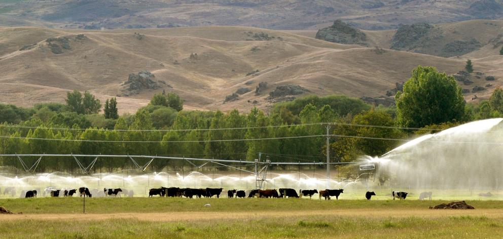 A pivot irrigator near Omakau supports a dairy herd. Photo: Stephen Jaquiery