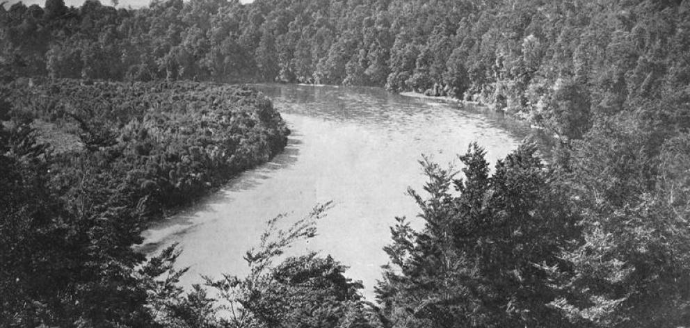 Horseshoe Bend, Waiau River, between Lakes Te Anau and Manapouri, Fiordland National Park. -...