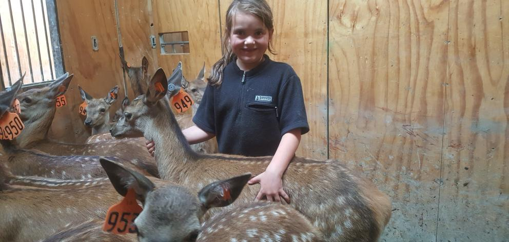 Alex (5), and Mia (9) Brock, of Merino Downs, are keen to help with some of the family's deer....