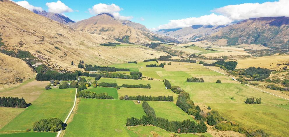 Alpha Burn high country beef, lamb and venison farm, West Wanaka. Photo: Chris Arbuckle