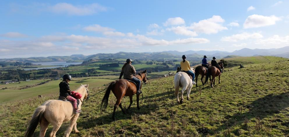 Even the  novice horseman will enjoy a trek across the 660ha organic sheep and beef farm with...