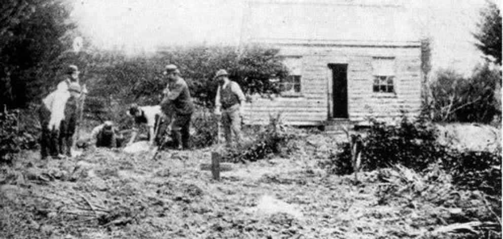 Police search Minnie Dean's garden at The Larches in May 1895.