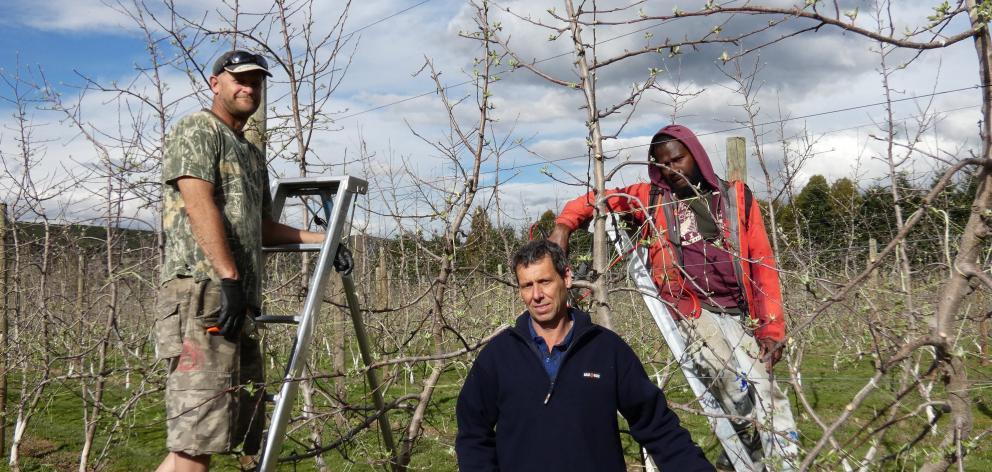New Zealand worker Sasha Gandy (left), Ettrick Fruit Growers Association chairman Pete Vernon ...