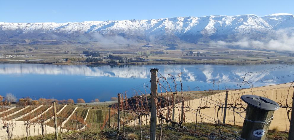 Prophet's Rocks' Rocky Point vineyard