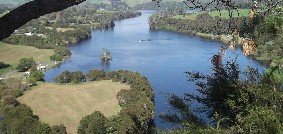 The Waikato River from just above Jones Landing.