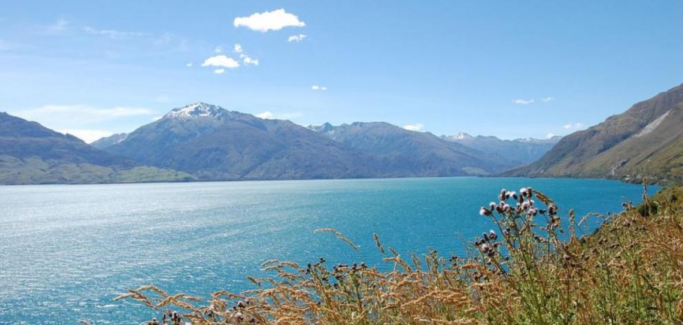 Fishermen first reported algae in Lake Wanaka in the early 2000s.