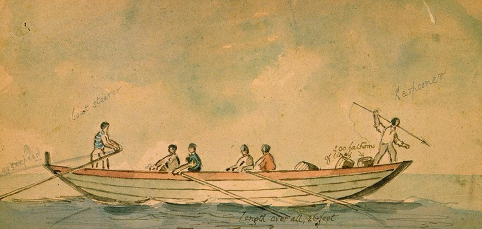 A whale boat of the type used in the mid-19th century. IMAGE: ALEXANDER TURNBULL LIBRARY
