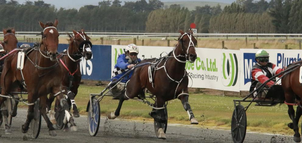 Pembrook Playboy burst through a gap to win the Central Otago Cup for Nathan Williamson. PHOTO:...