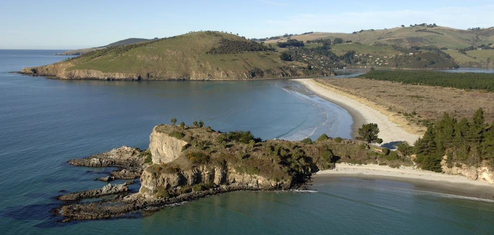 Mapoutahi, the former site of a Maori pa, juts out from Purakaunui Bay and leads to the...