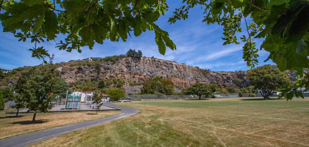 Te Papa Kura Redcliffs Park. Photo: Newsline / CCC