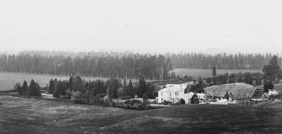 Salisbury Estate in North Taieri, circa 1909. Photo: Supplied