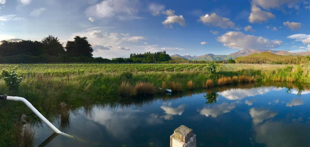 A view of Little Domett Estate, in the Waitaki Valley. PHOTO: SUPPLIED