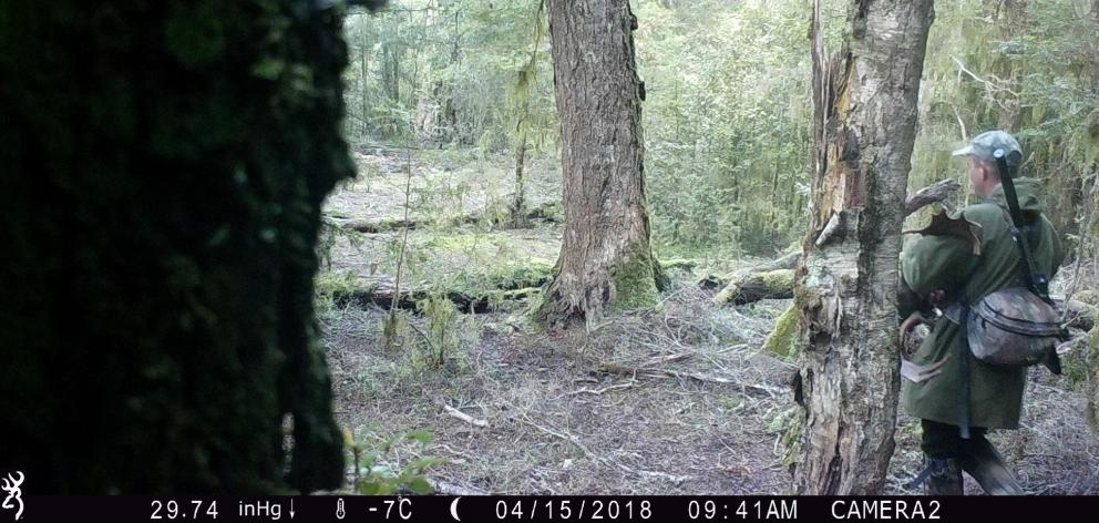 A still from a security camera on John Knight's property, showing a man hunting unlawfully. PHOTO...