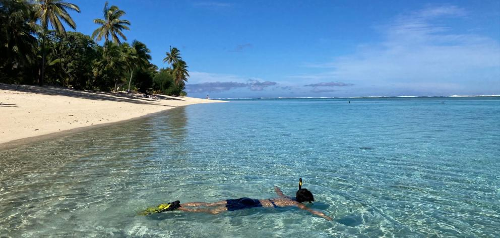Where would you rather be? The crystal clear waters of Rarotonga are perfect for snorkeling....
