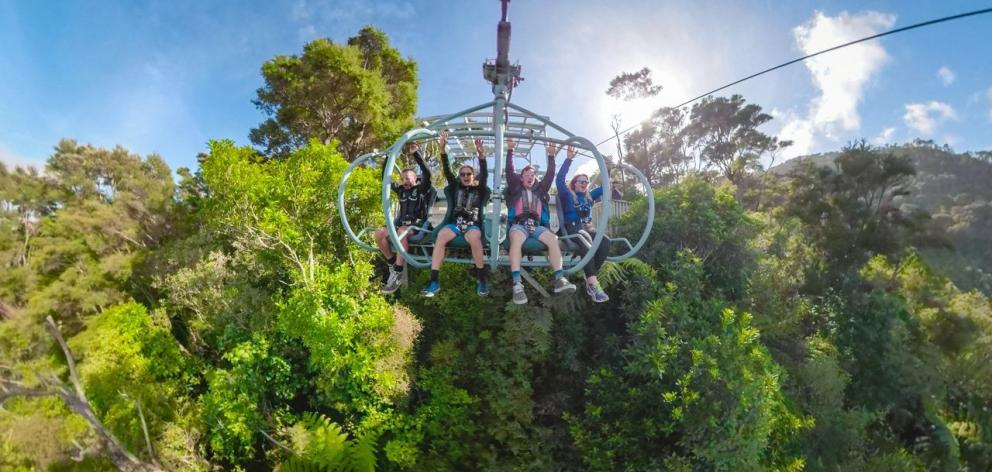 Cable Bay Adventure Park's Skywire is one of Nelson's newer and very exciting tourist attractions...