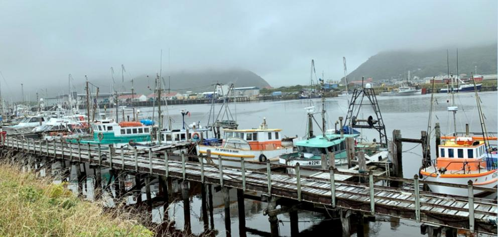 The fishing fleet in Greymouth. PHOTOS: SUPPLIED