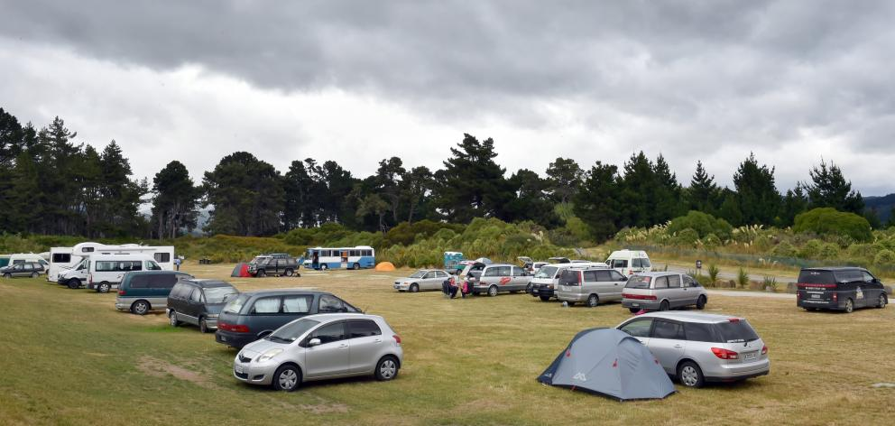 Freedom campers at the Warrington Domain in January. Photo: Gregor Richardson