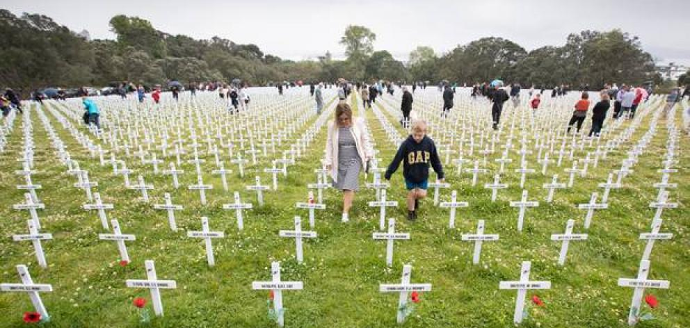 The Fields of Remembrance at the Auckland Domain. Photo: NZ Herald