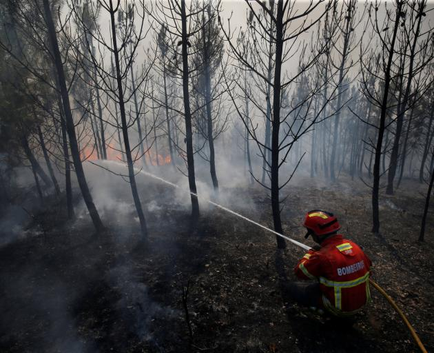 The fires have ravaged the central districts of Leiria and Castelo Branco. Photo: Reuters