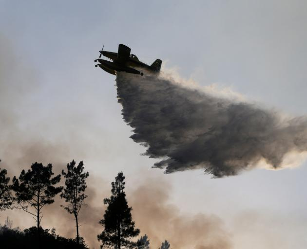 A plane dumps water on the forest fire in Mendeira. Photo: Reuters