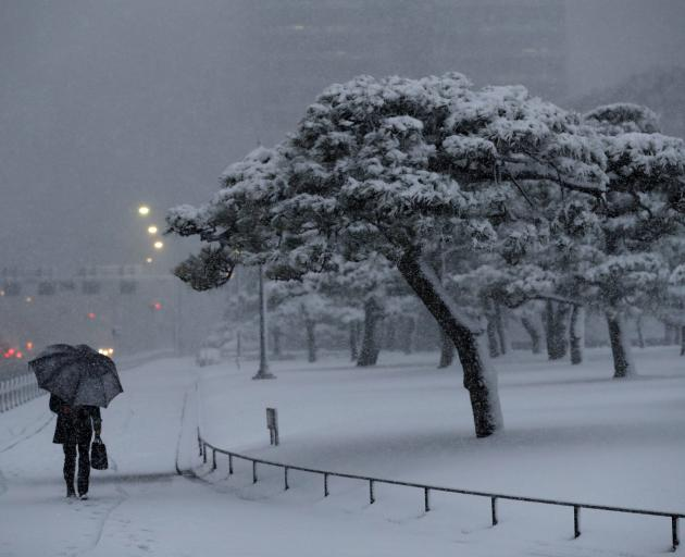 Japan hit by heaviest snowfall since 2014