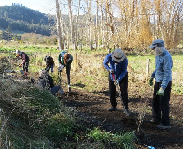 It's the first day of spring, and the volunteers are out planting near the estuary.