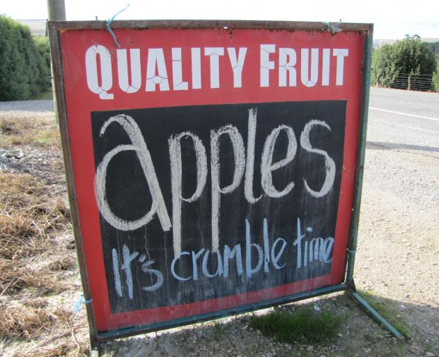 A sign advertises apples for sale in Coal Creek, on the other side of the CLutha River from the...