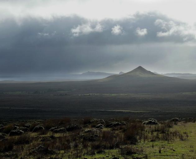 Volcanic cones in the barren north of Chatham Island. PHOTO: DAVID THOMSON
