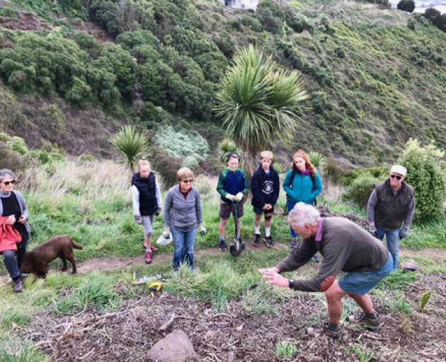 Volunteers replant trees in Drayton Reserve. Photo: Supplied