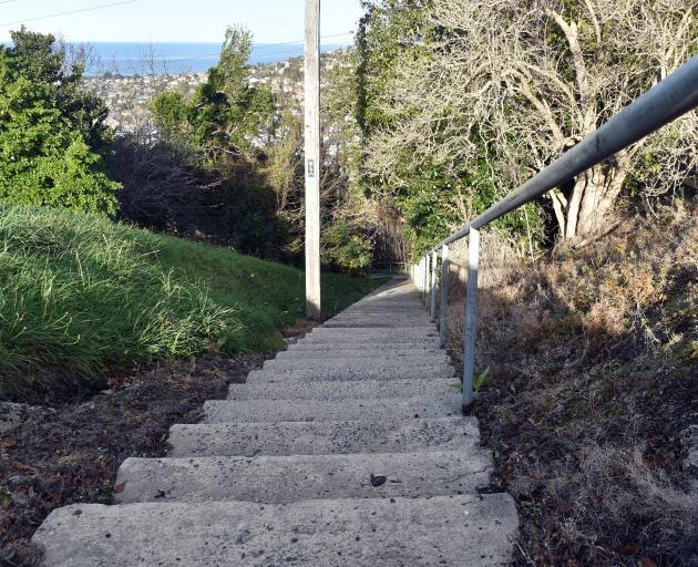 The steps down to Caversham from the corner of Elgin Rd and Warwick St. Photo: Peter McIntosh