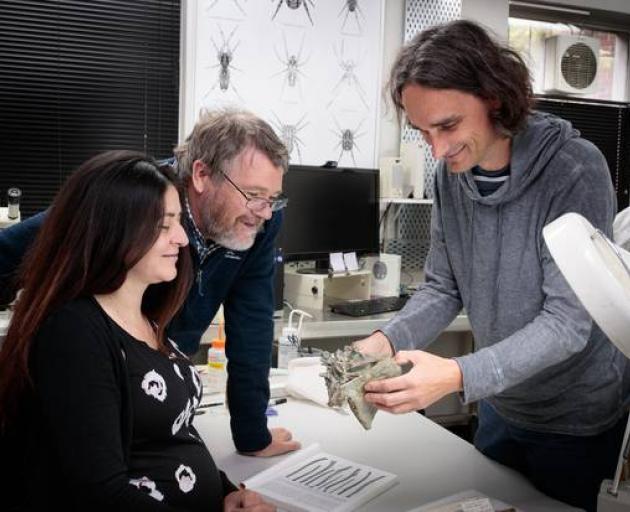 Drs Vanesa De Pietri, Paul Scofield and Gerald Mayr examine a Crossvallia waiparensis fossil....