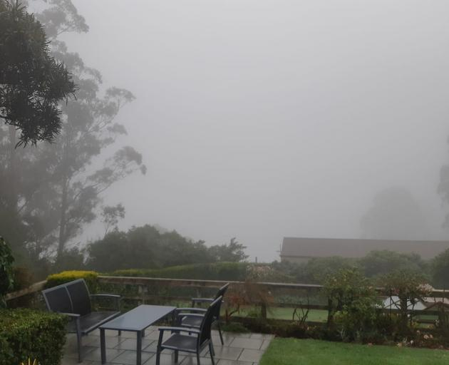 It was a murky morning at The Cove and Otago Harbour was out of sight. Photo: Paula Cooper