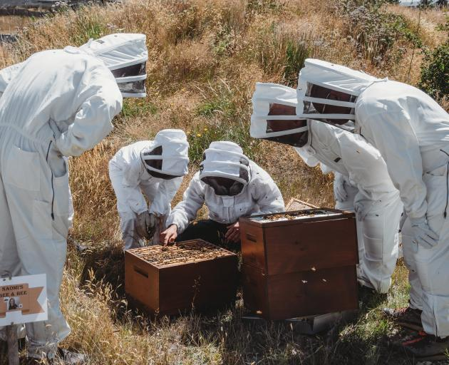 Naomi Lindsay takes her charges to Tiaki Bees to see how honey is produced.PHOTOS: SUPPLIED