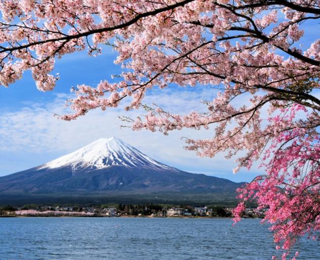 Mt Fuji. Photo: Getty Images